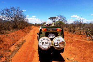 Kenia-Safari-Reise-Jeep-Tierbeobachtungen-DM-Tours-und Safaris