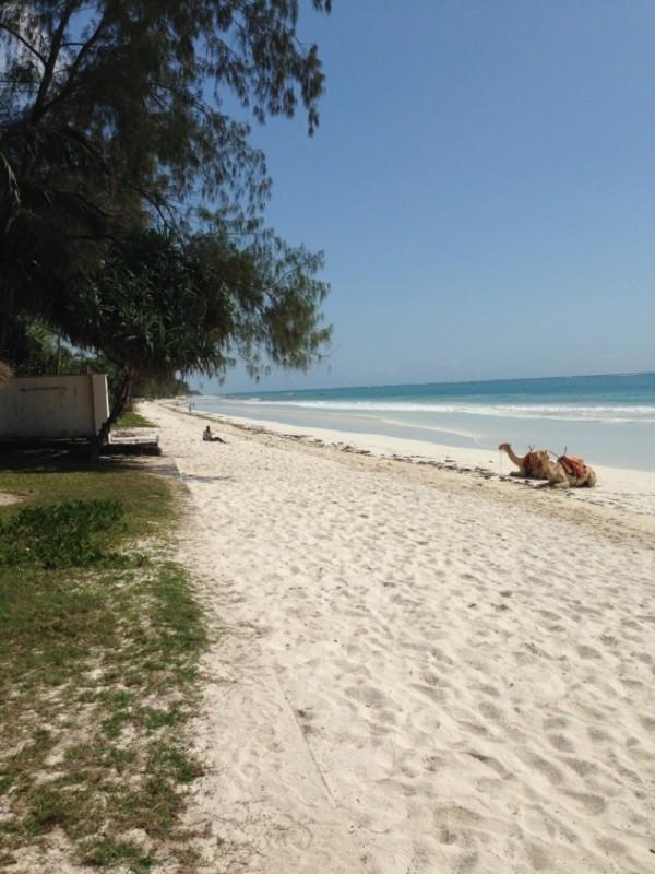 Strand Kenia Reise Urlaub Indischer Ozean