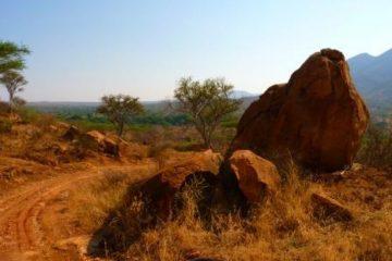 Safaritour-Nationalpark-in-Kenia-Pisten-Jeep-und-Gelaendewagentour