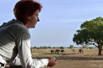 Marina-Schmidt-vom-Reisekontor-Schmidt-Elefantenbeobachtungen-in-Kenia-Safari