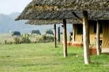Terrassen der Zelte im Flamingo Hill Camp
