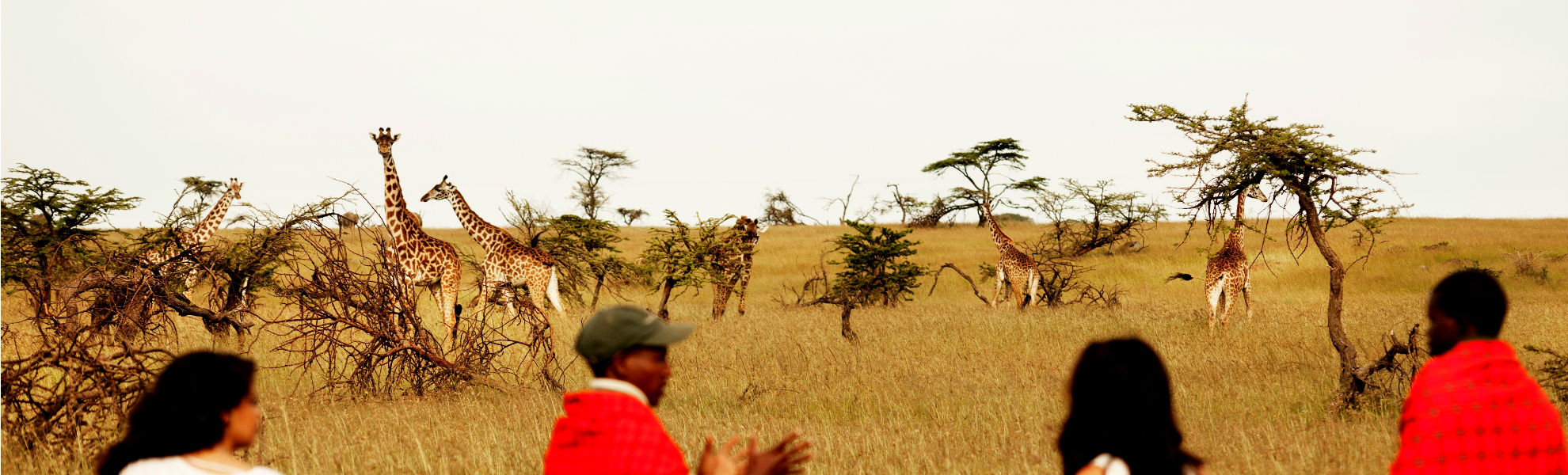 Fußpirsch am Karen Blixen Camp im Masai Mara Schutzgebiet