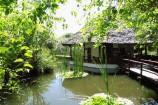 Teich im Garten der Leisure Lodge