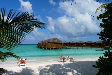 Gruppenreise Sri Lanka / Malediven