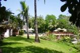 Garten und Pool im Pinewood Beach Resort