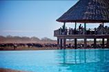 Wasserloch mit Büffelherde in der Voi Wildlife Lodge