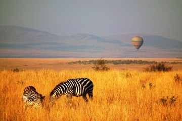 Ballon Safari in der Masai Mara