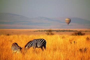 Ballon Safari in der Masai Mara