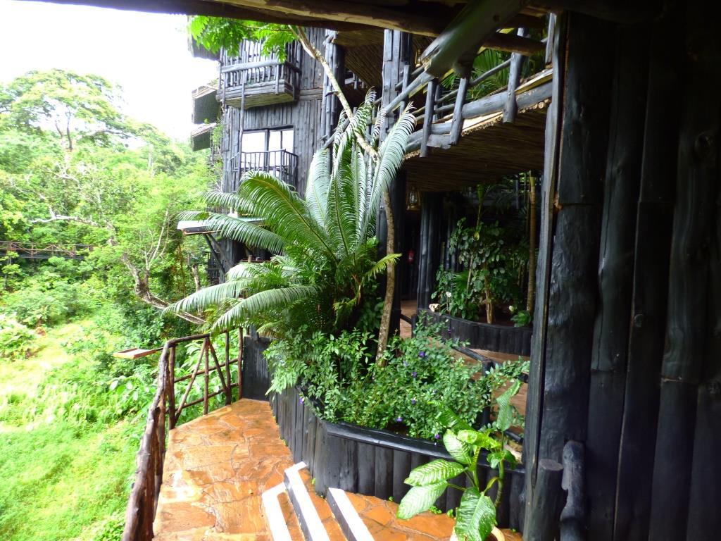 Shimba Hills Lodge am Wasserloch