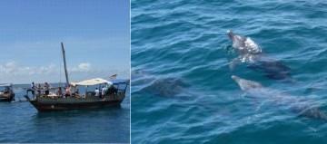 Pili Pippa Segelausflug an Kenias Küste