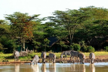 Sweetwaters Game Reservat in Kenia