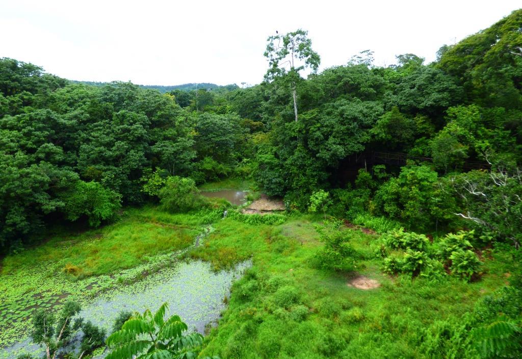 Erlebnistour Shimba Hills