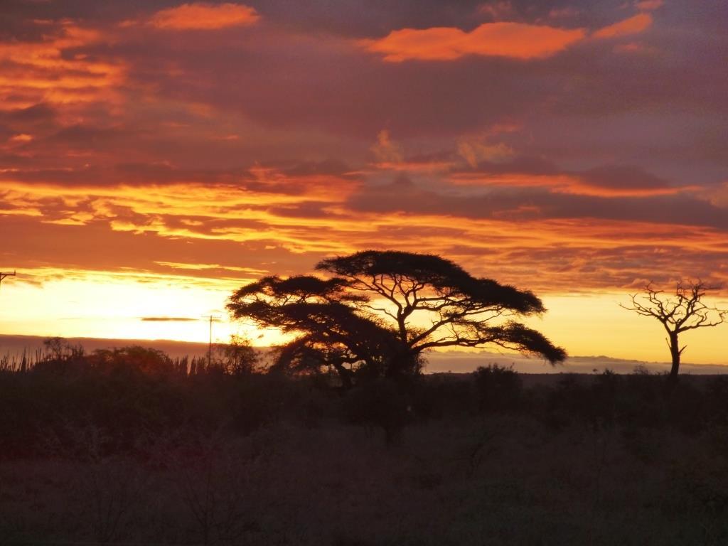 Abendstimmung im Amboseli Nationalpark