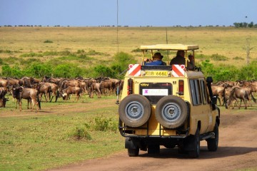 Safari in Kenia