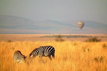 Ballonsafari Masai Mara Kenia