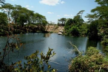 Mzima Springs Tsavo West