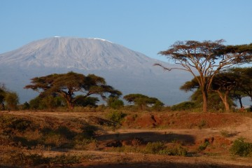 Safaritagebuch Kilimanjaro Amboseli