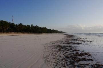 Diani Beach morgens