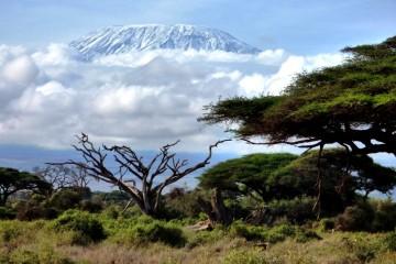Kilimanjaro Amboseli Kenia