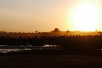 Wasserloch Tsavo East