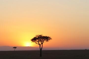 Kenia Safari Tour