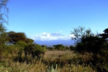 Kilimanjaro in Tansania vom Amboseli Nationalpark in Kenia aus