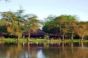 Voyager Ziwani Camp Kenia 1
