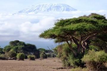Kenia Urlaub Safari: Kilimanjaro vom Amboseli Nationalpark Kenia aus