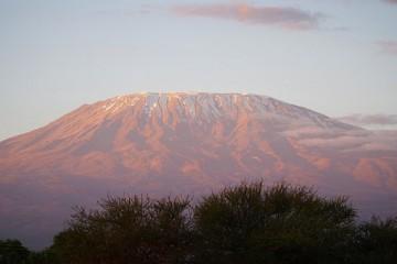 Kilimanjaro Amboseli Safari Kenia Safari vom Kenia Spezialist Reisekontor Schmidt