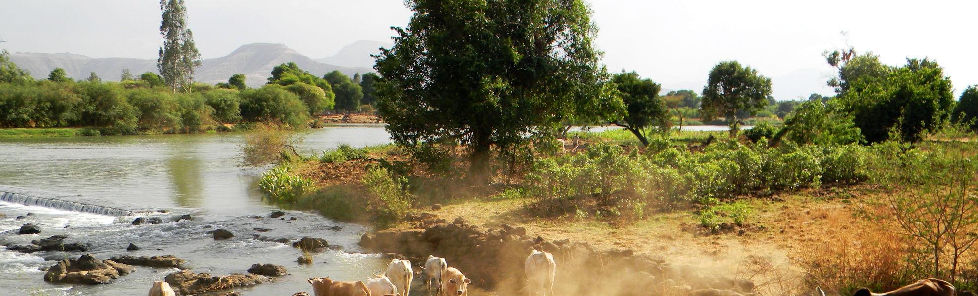 Guppenreise Äthiopien Reisekontor Schmidt