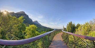 Gruppenreise Südafrika Botanischer Garten in Kirstenbosch Südafrika