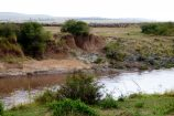 Kenia Reise mit Masai Mara Safaritour mit KeniaSpezialist Keniaurlaub.de Reisekontor Schmidt Leipzig, Safari Tour - Great Migration Masai Mara