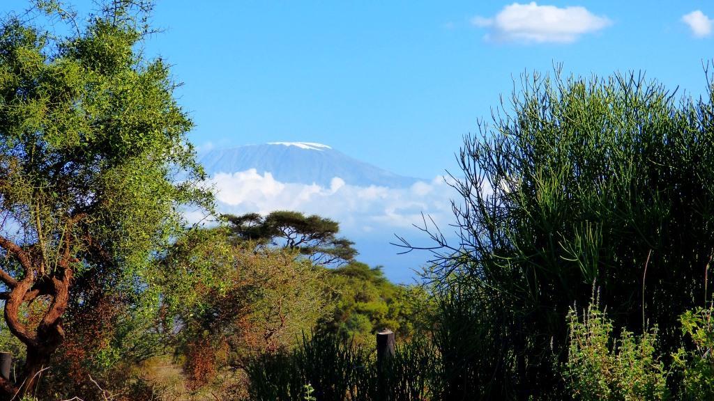 Kenia Safari Tour - Blick auf den Kilimanjaro während einer Kenia Safari mit Kenia Spezialist Reisekontor Schmidt Leipzig keniaurlaub.de