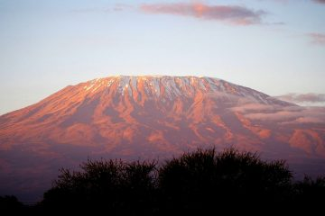 Kilimanjaro vom Amboseli Nationalpark in Kenia während einer Kenia Safari bei Keniareise