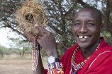 Severin Safari Camp, Kenia, Nationalpark Tsavo West